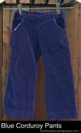 blue-corduroy-pants